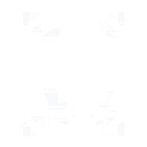 icon-bp-v1